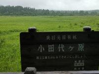 小田代ヶ原~湯の湖・・・雨のウォーキング